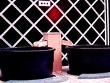 20050308-超スーパー銭湯ららぽーとの湯・常盤殿-0020-DSC06199