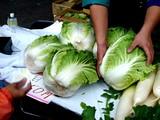 20061112-船橋市農水産祭・船橋中央卸売り市場-1026-DSC00584