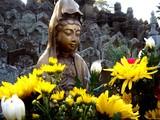 20061231-市川市中山・日蓮宗・法華経寺-1505-DSC01441