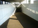 20060806-1523-中山競馬場・エンタメパラダイス2006-DSC04963
