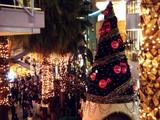 20061103-ららぽーと・巨大クリスマスツリー-1758-DSC09019