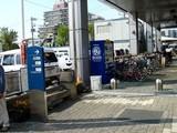 20061028-習志野市・谷津遊路・ハロウィン-1144-DSC07746