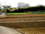 20061014-習志野市立第一中学校-1101-DSC06340