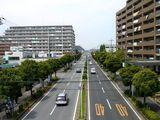 20070512-船橋市・県立行田公園・西-1210-DSC05076