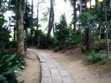 20070630-船橋市東船橋7・茂侶神社-1643-DSC01619