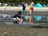 20070430-ふなばし海浜公園・潮干狩り-1038-DSC01881
