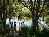 20070430-市川市妙典・ザリガニ釣り-1355-DSC02491