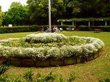 20070512-船橋市・県立行田公園・東・バーベキュー-1239-DSC05084