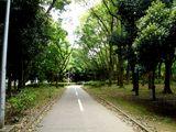 20070512-船橋市・県立行田公園・東-1244-DSC05114
