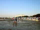 20070430-ふなばし海浜公園・潮干狩り-1025-DSC01797