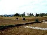 20061014-習志野市立第一中学校-1103-DSC06345