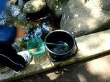 20070602-習志野市・香澄公園・ザリガニ釣り-1047-DSC07409