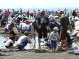 20070430-ふなばし海浜公園・潮干狩り-1037-DSC01866