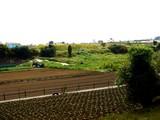 20061014-習志野市立第一中学校-1101-DSC06341