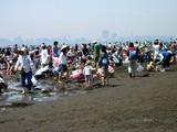 20070430-ふなばし海浜公園・潮干狩り-1032-DSC01832