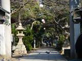 20071230-船橋市宮本5・船橋大神宮・初詣準備-1026-DSC02131