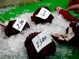 20071230-船橋市市場1・船橋中央卸売市場・年末-1057-DSC02254