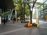 20071030-東京都・東京国際フォーラム・ハロウィン-0935-DSC07999