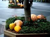 20071011-東京都・東京国際フォーラム・ハロウィン-0932-DSC07986