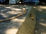 20071028-船橋市宮本5・船橋大神宮・奉納相撲大会-1000-DSC01556
