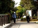 20071020-習志野市・習志野さわやかウォーク-1230-DSC09820