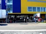 20071123-IKEA船橋・クリスマス・生ツリー・モミの木-1250-DSC06552