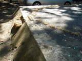 20071028-船橋市宮本5・船橋大神宮・奉納相撲大会-1000-DSC01557