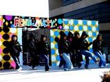 20071104-浦安市・明海大・明海祭・きらり-1135-DSC03141