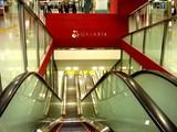 20071024-JR東京駅・グランスタ・オープン-2355-DSC00601
