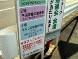 20071020-習志野市・習志野さわやかウォーク-1230-DSC09814