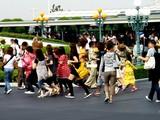 20070913-東京ディズニーランド・ハロウィン仮装-0900-DSC03041