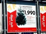 20071125-IKEA船橋・クリスマス・生ツリー・モミの木-1043-DSC07206