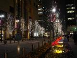 20071228-東京都・丸の内・イルミネーション-1814-DSC01916