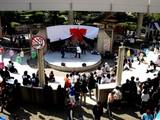 20071104-浦安市・明海大・明海祭・きらり-1128-DSC03117