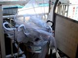 20071028-船橋市・ららぽーと・台風20号・カサ-0939-DSC01487