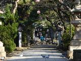 20071230-船橋市宮本5・船橋大神宮・初詣準備-1026-DSC02133
