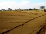 20071201-習志野市谷津・JR津田沼駅南口再開発事業-1247-DSC08191