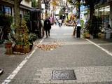 20071201-習志野市谷津遊路商店街・クリスマス-1116-DSC07838