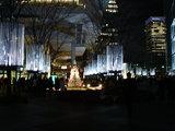 20071225-東京都・丸の内・イルミネーション-1919-DSC01123