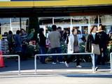 20071123-IKEA船橋・クリスマス・生ツリー・モミの木-1250-DSC06554