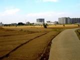 20071201-習志野市谷津・JR津田沼駅南口再開発事業-1247-DSC08193