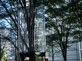 20071113-東京国際フォーラム・イルミネーション-0932-DSC04345