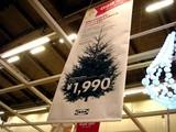 20071116-IKEA船橋・クリスマス・生ツリー・モミの木-1932-DSC04765