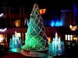 20071225-東京ディズニー・イクスピアリ・クリスマス-2000-DSC01154