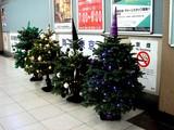 20071128-船橋市浜町2・IKEA船橋・クリスマス-2002-DSC07613