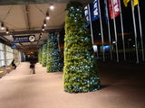 20071116-IKEA船橋・クリスマス-1944-DSC04775