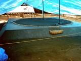 20071013-船橋市宮本5・船橋大神宮・奉納相撲大会-1142-DSC08555