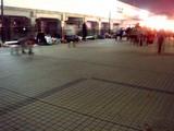 20071228-東京ディズニーランド・カウントダウンパーティー-DSC01963