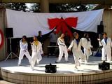 20071104-浦安市・明海大・明海祭・きらり-1100-DSC03048