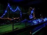 20071217-船橋市浜町1・京葉道路・クリスマス-2031-DSC09901